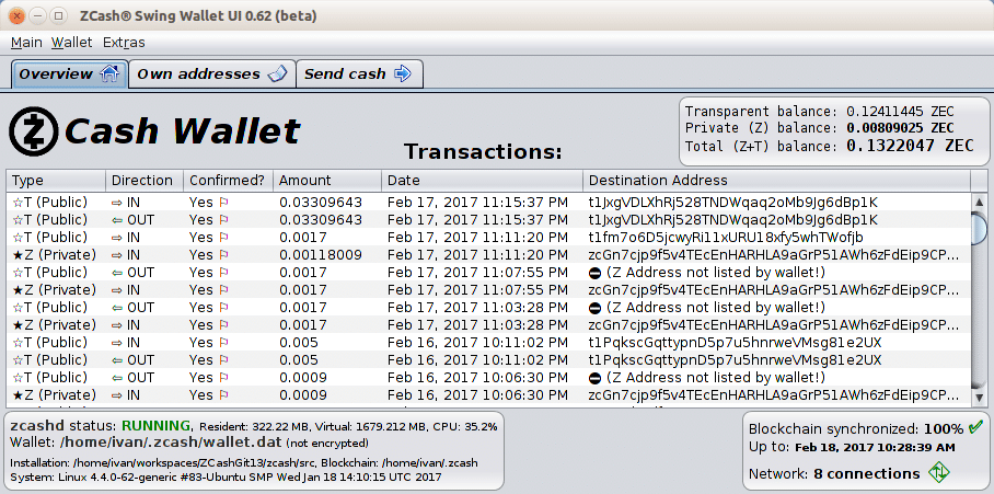 Screenshot of Zcash Swing Wallet UI