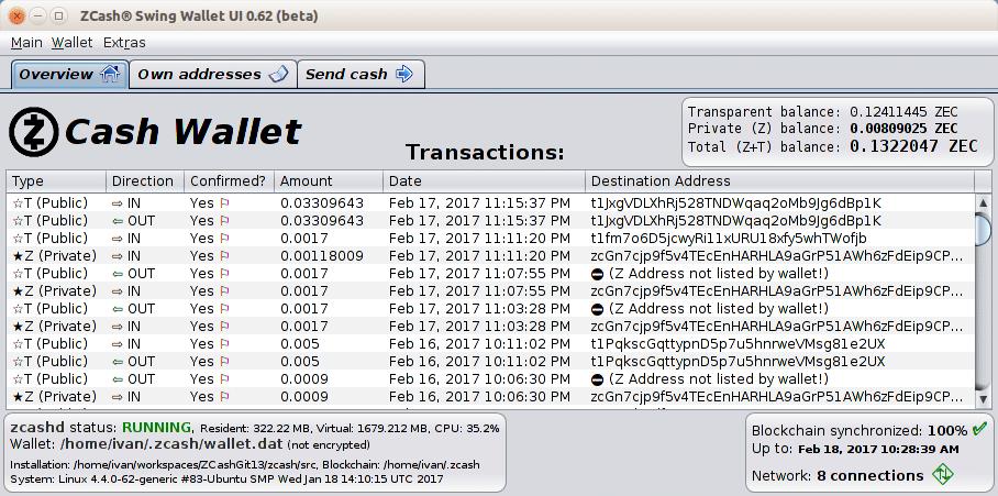 Screenshot of Zcash Swing Wallet UI